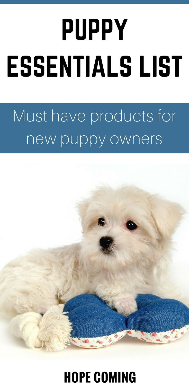 Puppy Essentials List A Guide for new Puppy Owners New