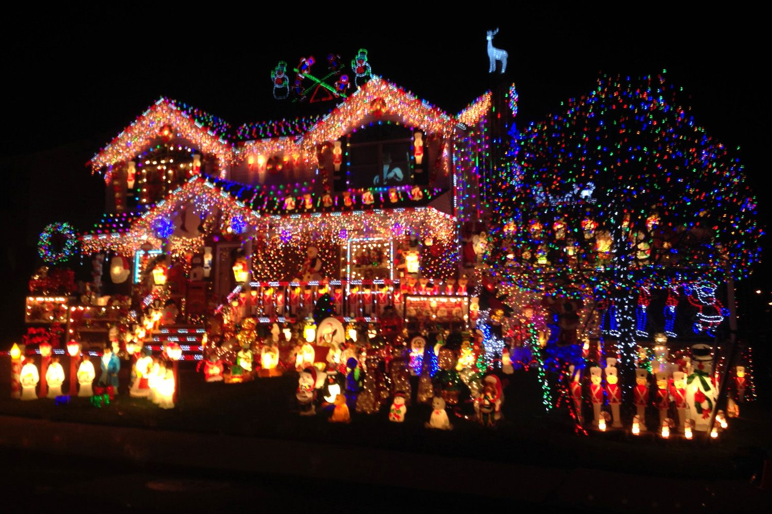 The Home Is Featured On The Great Christmas Light Fight Airing On Abc This Winter And Christmas House Lights Best Christmas Lights Outdoor Christmas Lights