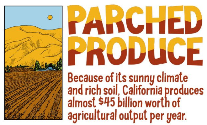 Interpret Data with Graphs, Percents, Rate and Ratio: California Agriculture in a State of Drought- In this infographic, learn about the impact of drought on agriculture in California. In the accompanying classroom activity, students use information on one of the infographic graphs to compare share of production value to share of water usage for different crops and consider the implications for the choice of crops to grow in times of drought.