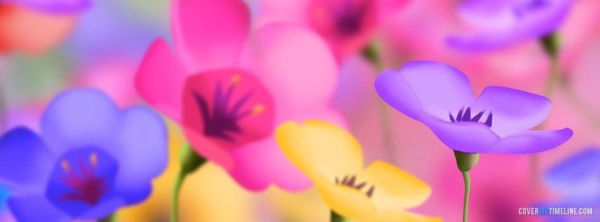 Spring - Colorful Spring Flowers - Free Facebook Covers, Facebook ...