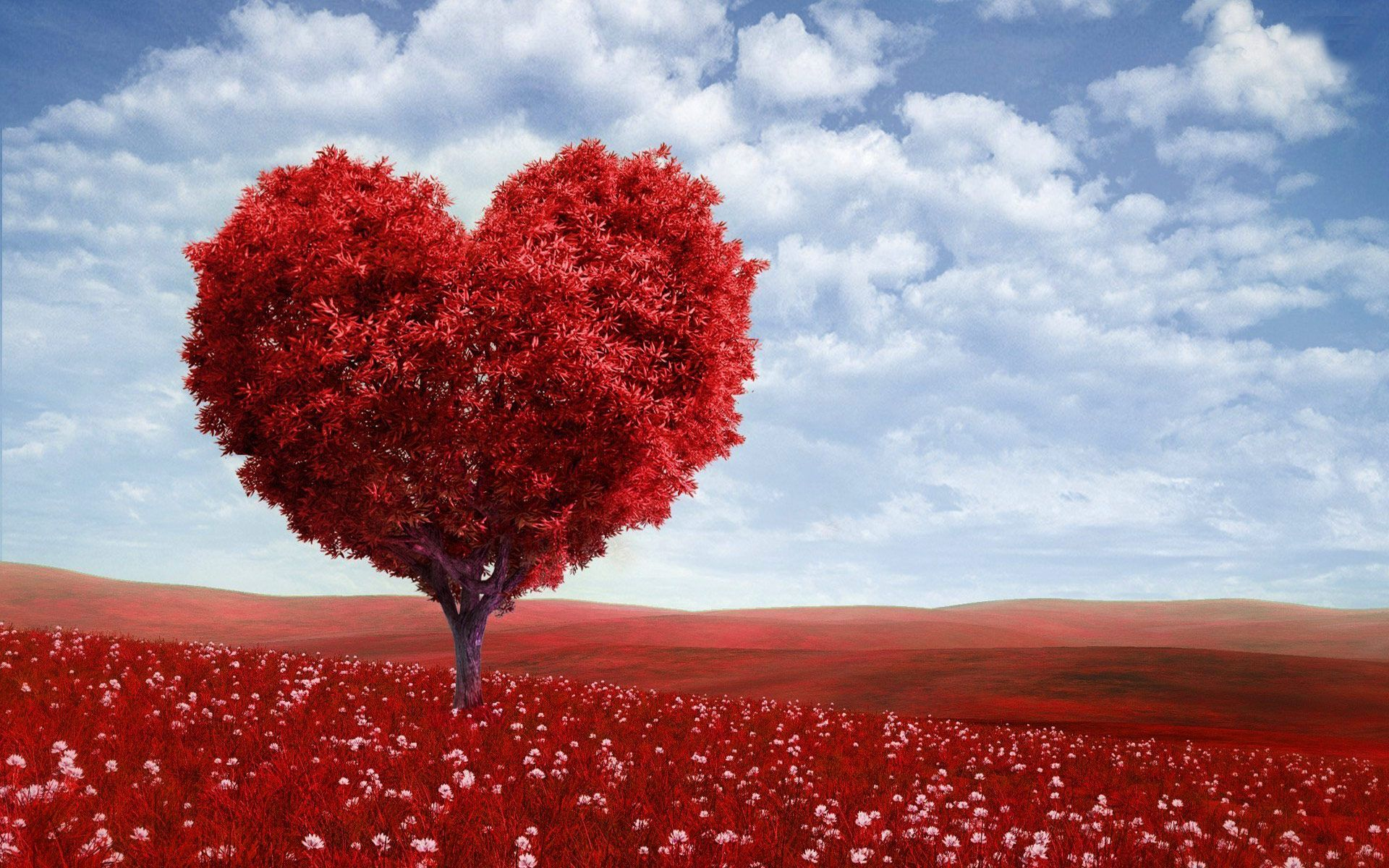 Free Valentine Wallpapers Free Valentine Love Tree Computer