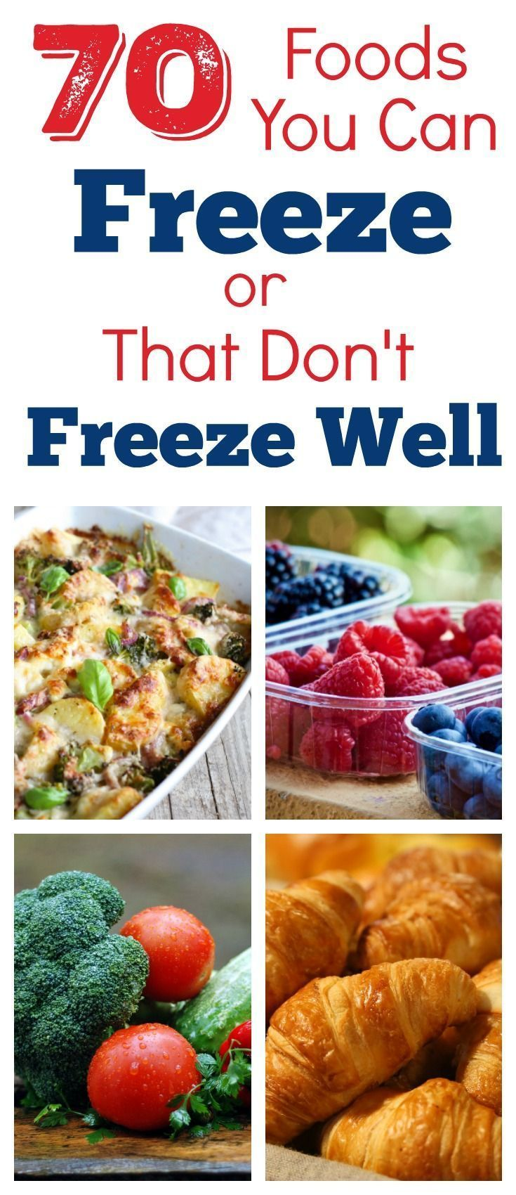 70 foods you can freeze or that dont freeze well best
