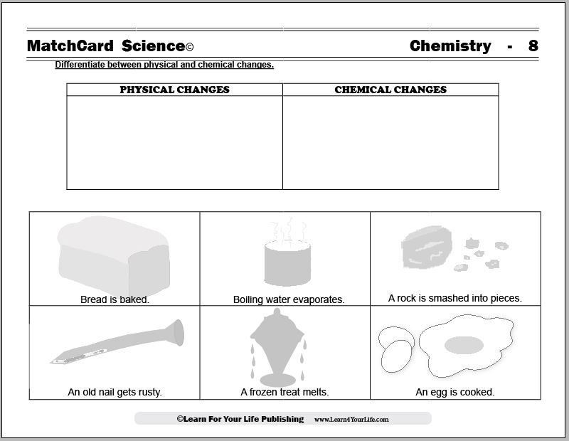Printable Worksheets chemical reaction worksheets : Physical and Chemical Changes Worksheet | Science H | Pinterest ...