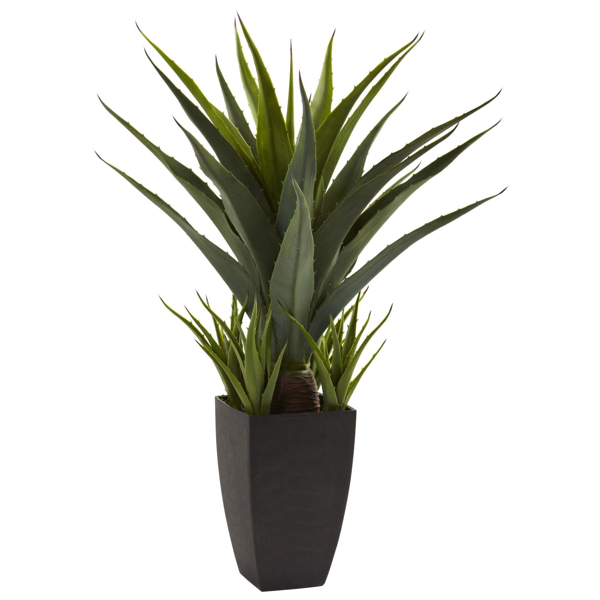 30 H Agave W Black Planter Black Planters Artificial Plants Floor Plants