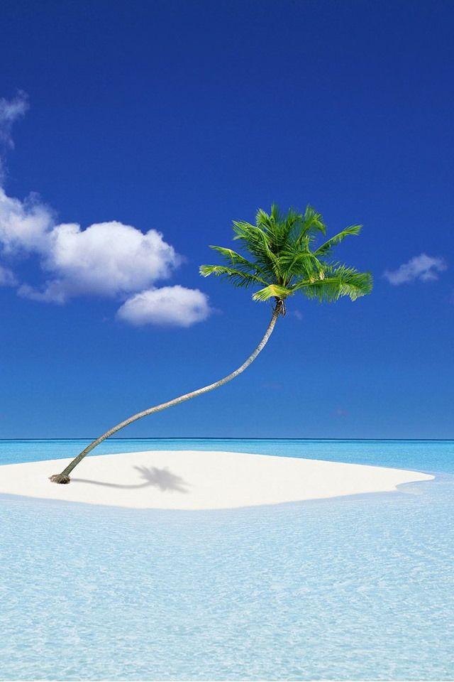 ロイヤリティフリー 綺麗 な 壁紙 海 トロピカルビーチ ハワイ
