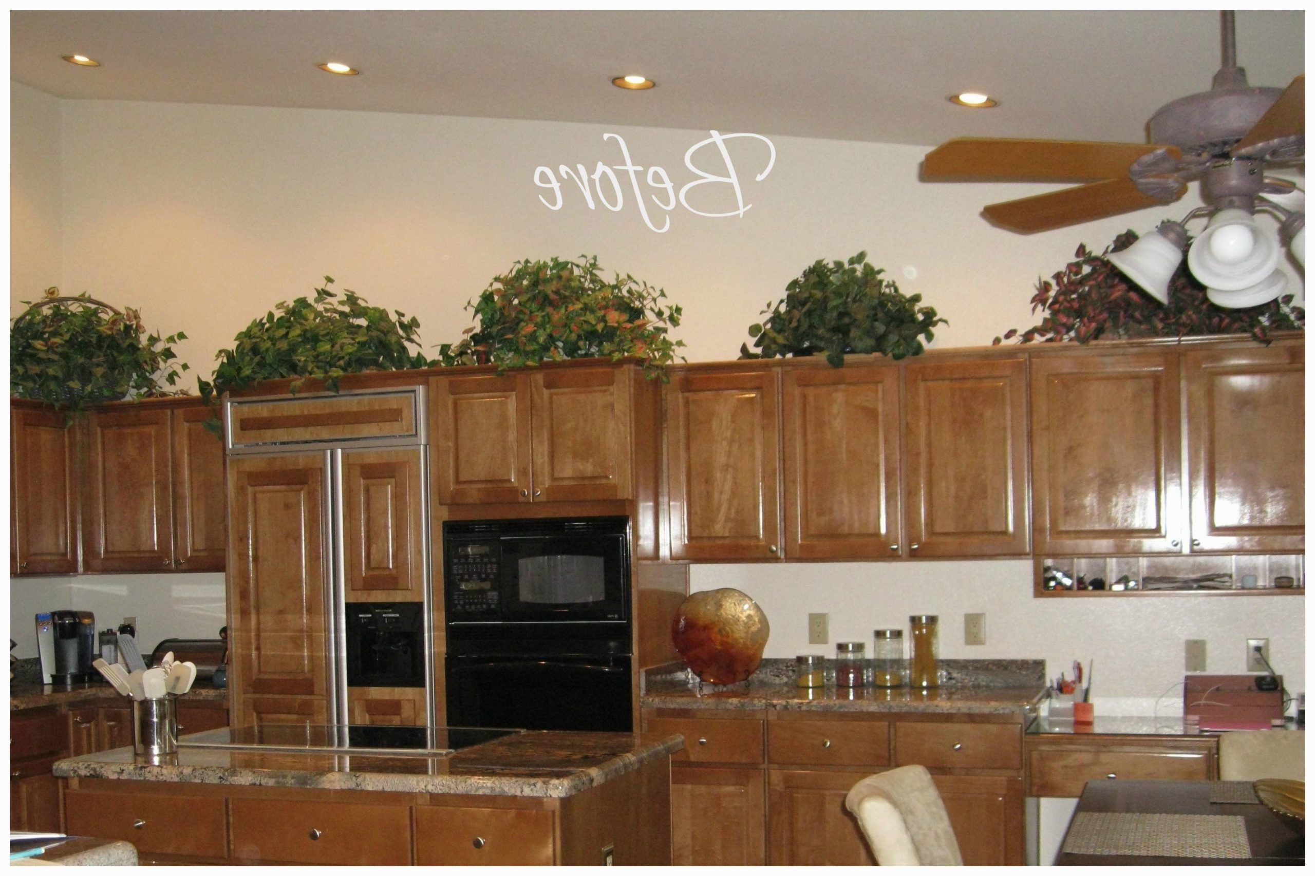 What Will Decorating Ideas For Above Kitchen Cabinets Be Like In The Next 5 Years In 2020 Kitchen Decor Kitchen Cabinets Pictures Chef Kitchen Decor