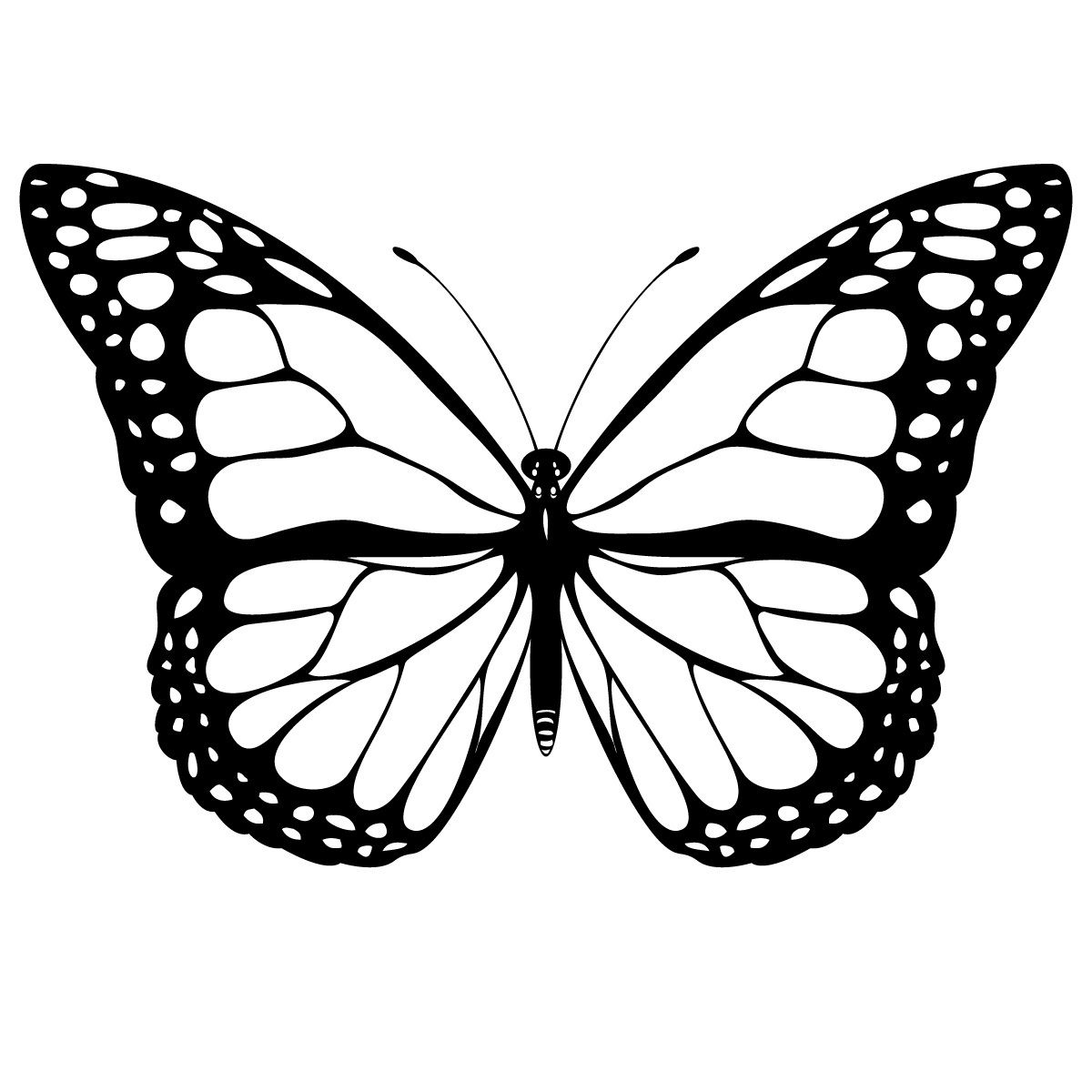 find this pin and more on papillons butterfly coloring pages