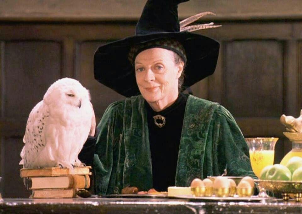 Minerva Harry Potter Characters Harry Potter Cast Harry Potter Movies