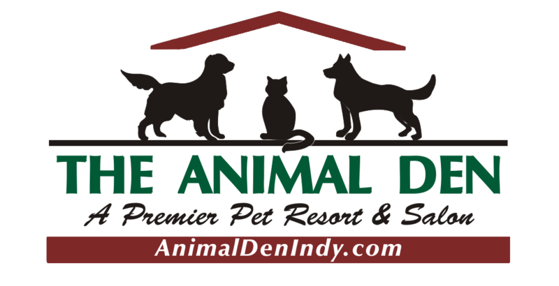 Free Day Of Lodging Coupon From The Animal Den Pet Resort Salon