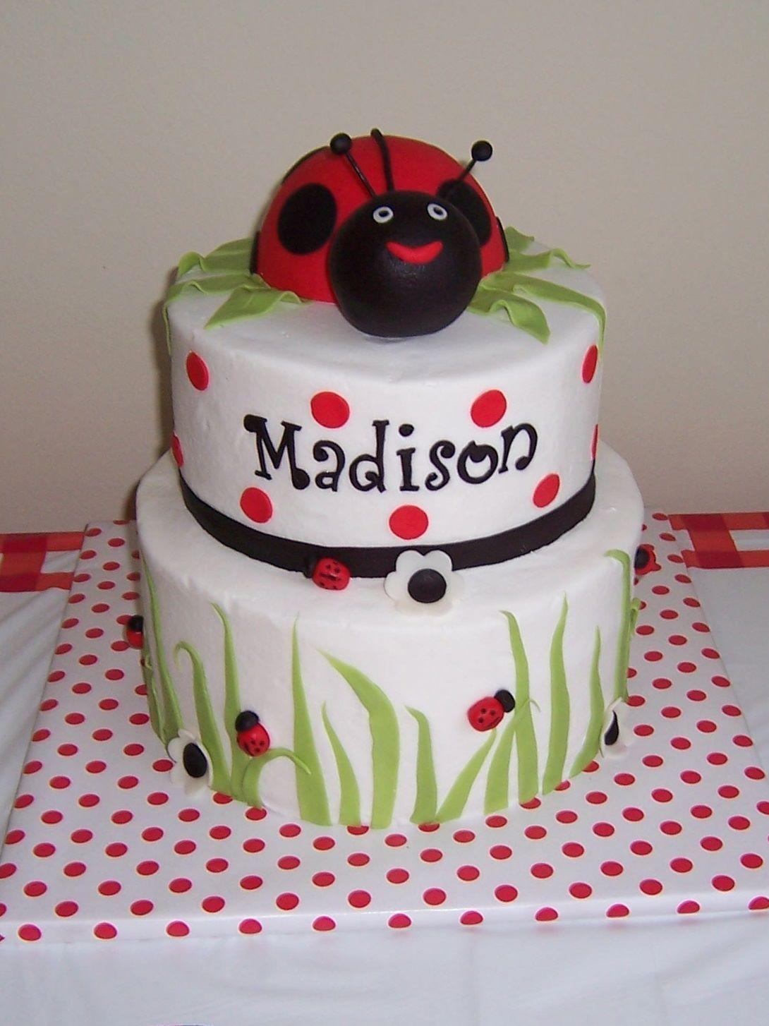 Ladybug 1st Bday Ladybug 1st Birthday Childrens Birthday Cakes