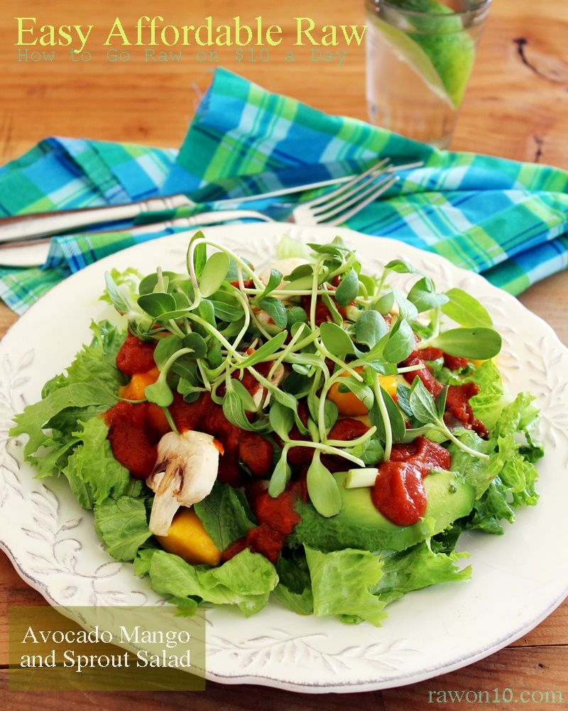 Raw on 10 a day or less avocado mango and sprout salad easy raw on 10 a day or less avocado mango and sprout salad forumfinder Images