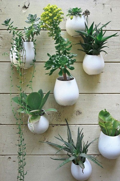 Succulent Wall Garden With Ikea Planters