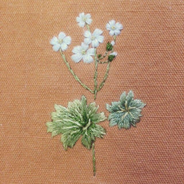 a rock jasmine 금강봄맞이꽃 #embroidery, #bajilda, #flower, #artist, #야생화자수, #꽃자수, #바찔다,  #needlepoint, #needlework, #stitch, http://www.blog.naver.com/oiry1444