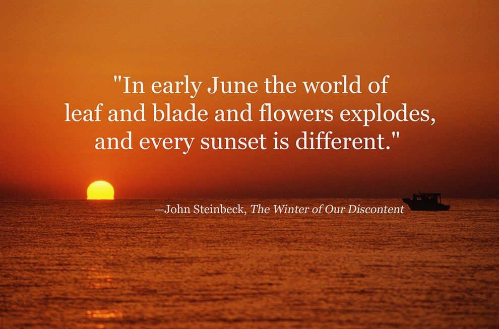 42 Of The Most Beautiful Literary Quotes About Summer Quotes