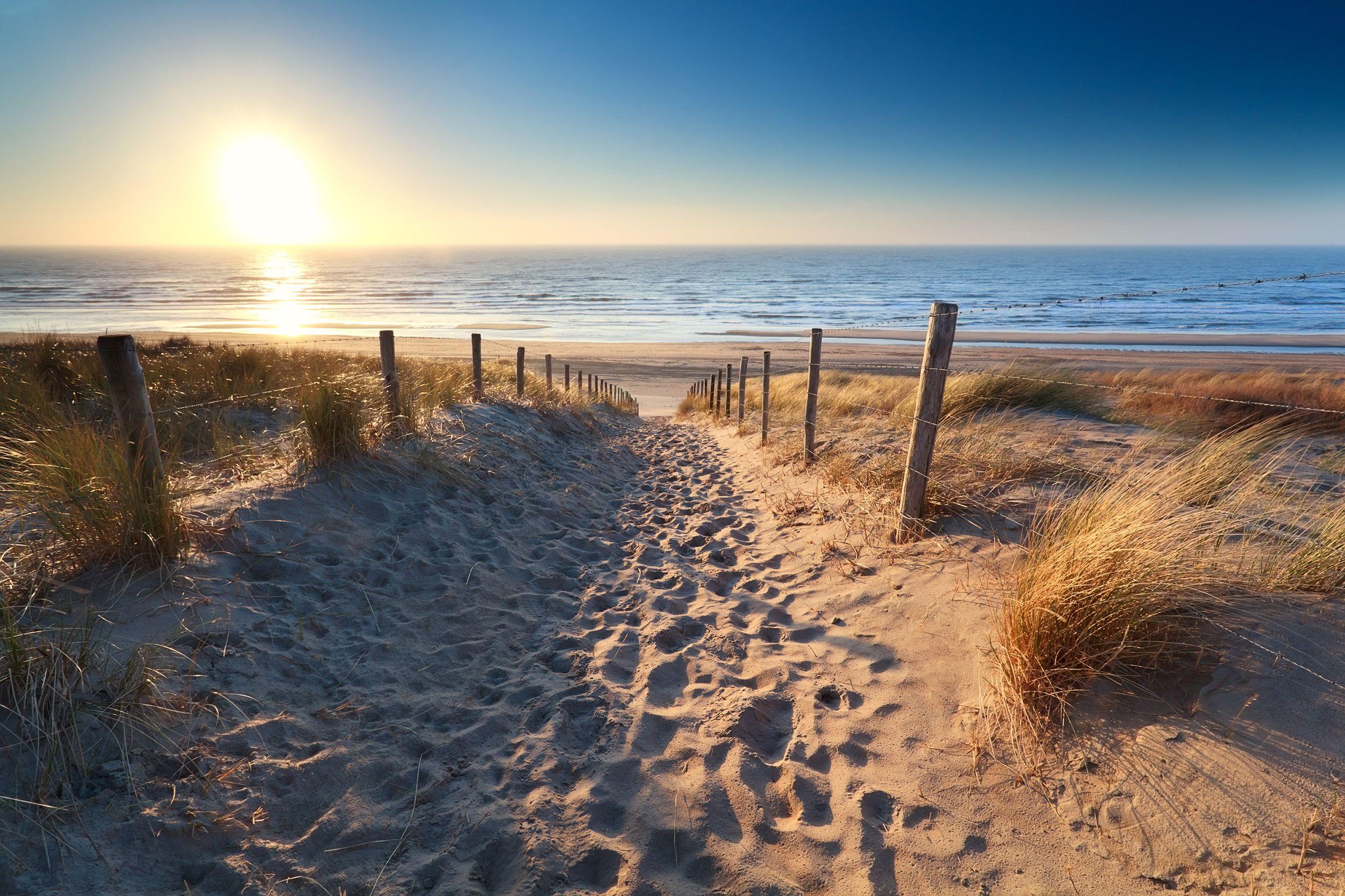 Silvester Holland Meer