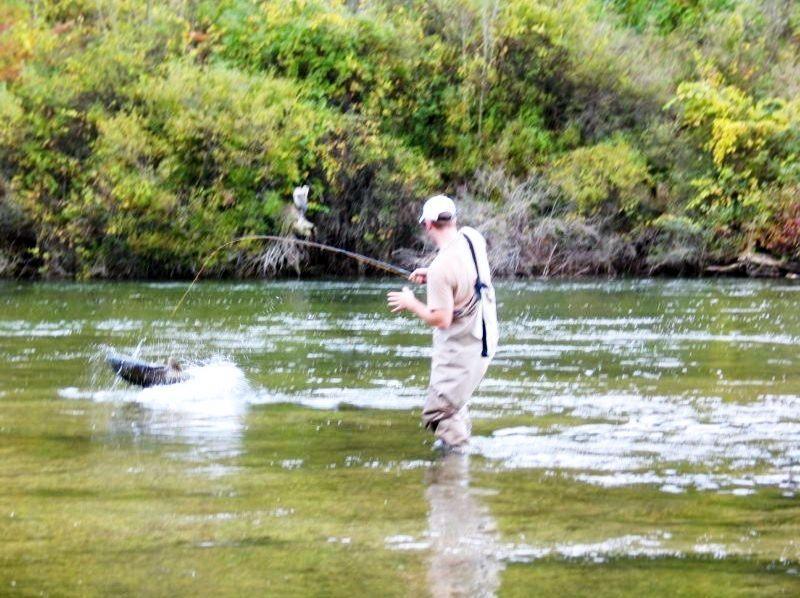 Salmon, Steelhead, Pan Fishing - NW Michigan - TIPPY DAM