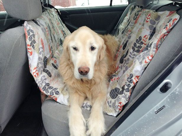 How To Make A Car Hammock For Your Pet Dog Hammock For Car Dog Seat Covers Dog Hammock