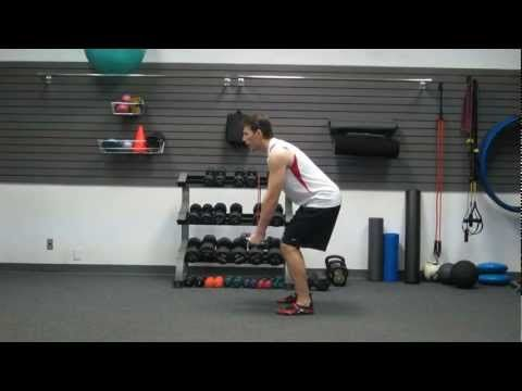 5 quick  easy exercises fitness for beginners workout