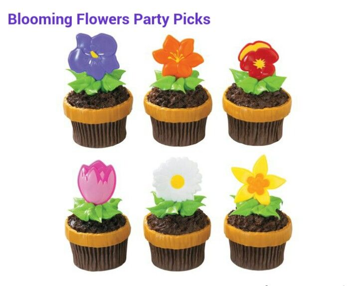 Chocolate cupcake a few green leaves for frosting and use one of the party pics. Cute and easy, love. Perfect for her garden birthday party!