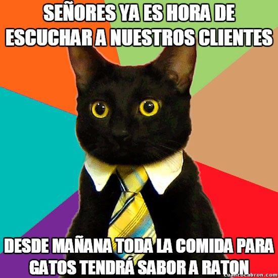 Miauchardising Gracias A Http Www Cuantocabron Com Si Quieres Leer La Noticia Completa V Meme Gato Memes De Gatos Divertidos Feliz Cumpleanos Memes
