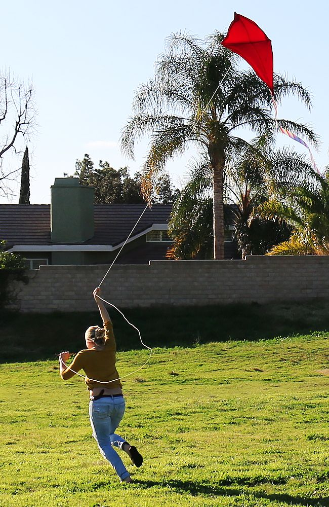 Kite Flying   DIY KITE DESIGN