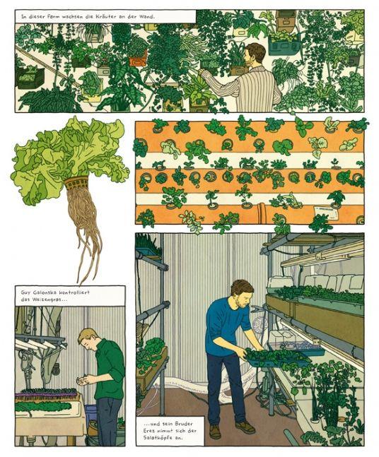 Gemüse muss nicht mehr vom Feld kommen - ein kleines Zimmer tuts auch. Drei Israelis in Berlin machen es vor.