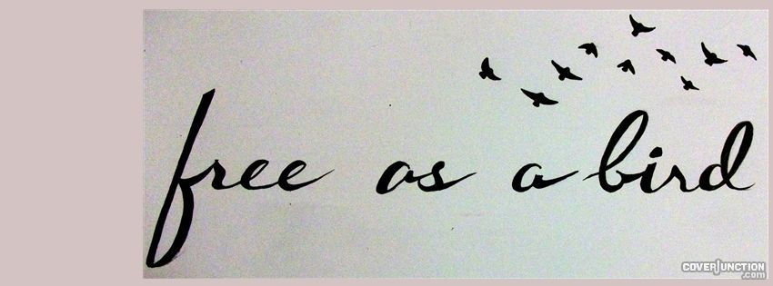 free as a bird Facebook Cover (With images) Free bird