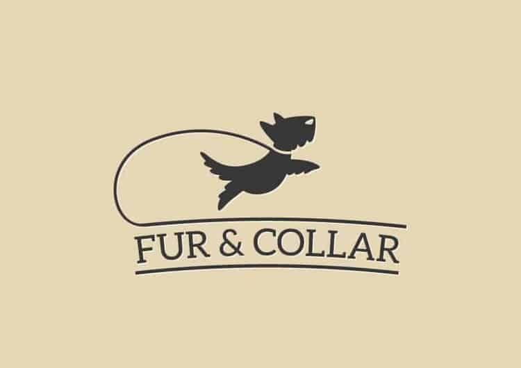 Dog Logo Winners Best In Show Designs By 99designs Dog Logo