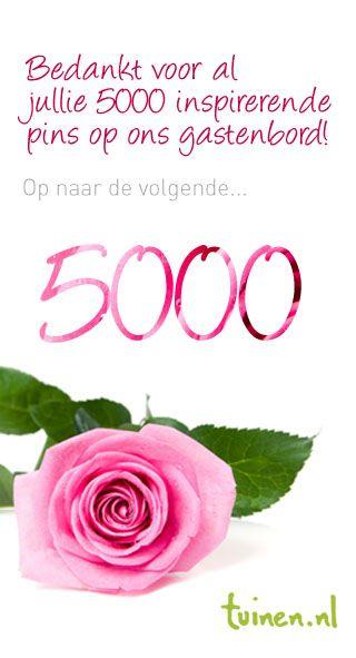 Bedankt voor al jullie 5000 inspirerende  pins op ons gastenbord! Op naar de volgende 5000  http://pinterest.com/tuinen/jouw-pins-voor-tuinen-nl/