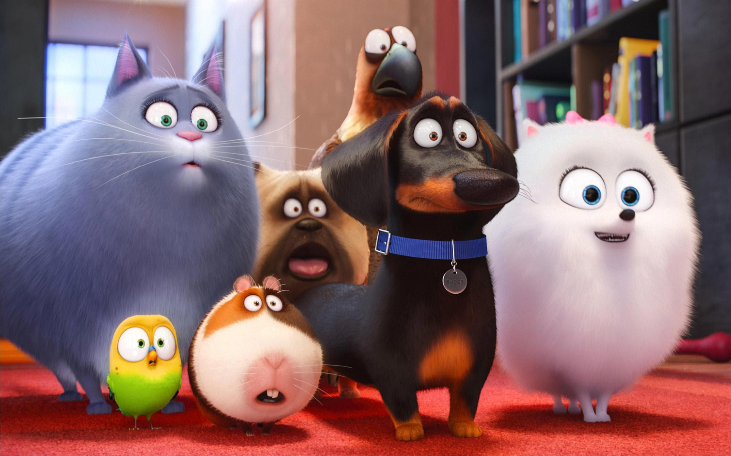The Secret Life Of Pets 2 Hd Wallpapers 7wallpapers Net Pets