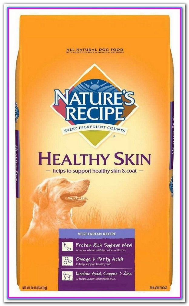 Best dog food for small dogs with skin allergies