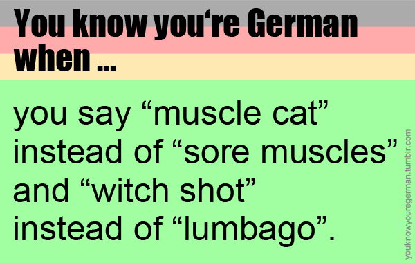 Submitted By Anncacim Cat Deutsch Deutschland German Germany Hexenschuss Know Lumbago Muscle Muscles Muskelkater Sh German Humor Germany German
