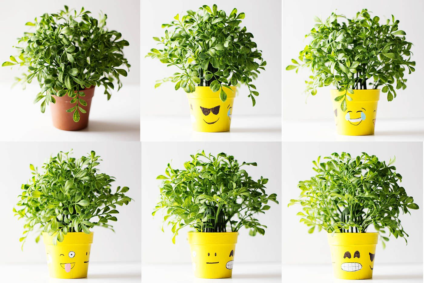 Diy Emoji Flower Pot How Are You Feeling Today All For The Boys Flower Pots Painted Flower Pots Emoji Flower