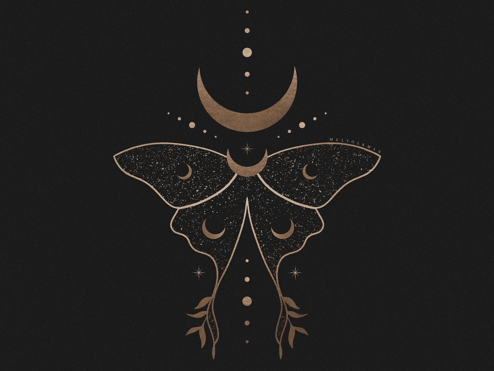 Cosmic Luna Moth Illustration By Mel Volkman by Mel Volkman | Dribbble