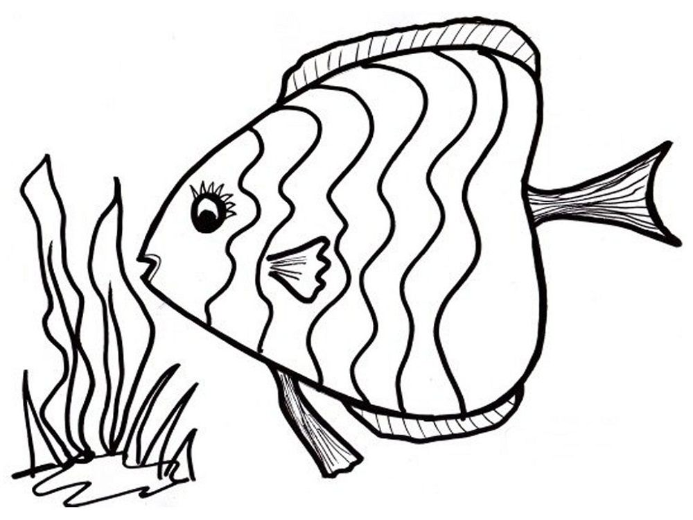 Fish Color Pages to Print | Activity Shelter | Coloring Pages for ...