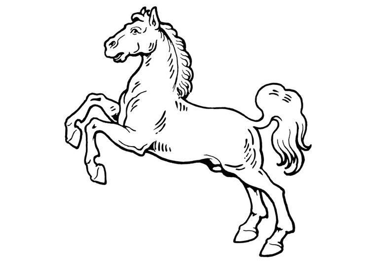 malvorlage pferd  ausmalbild 19310  malvorlagen