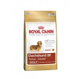 Royal Canin Teckel Adulto 28