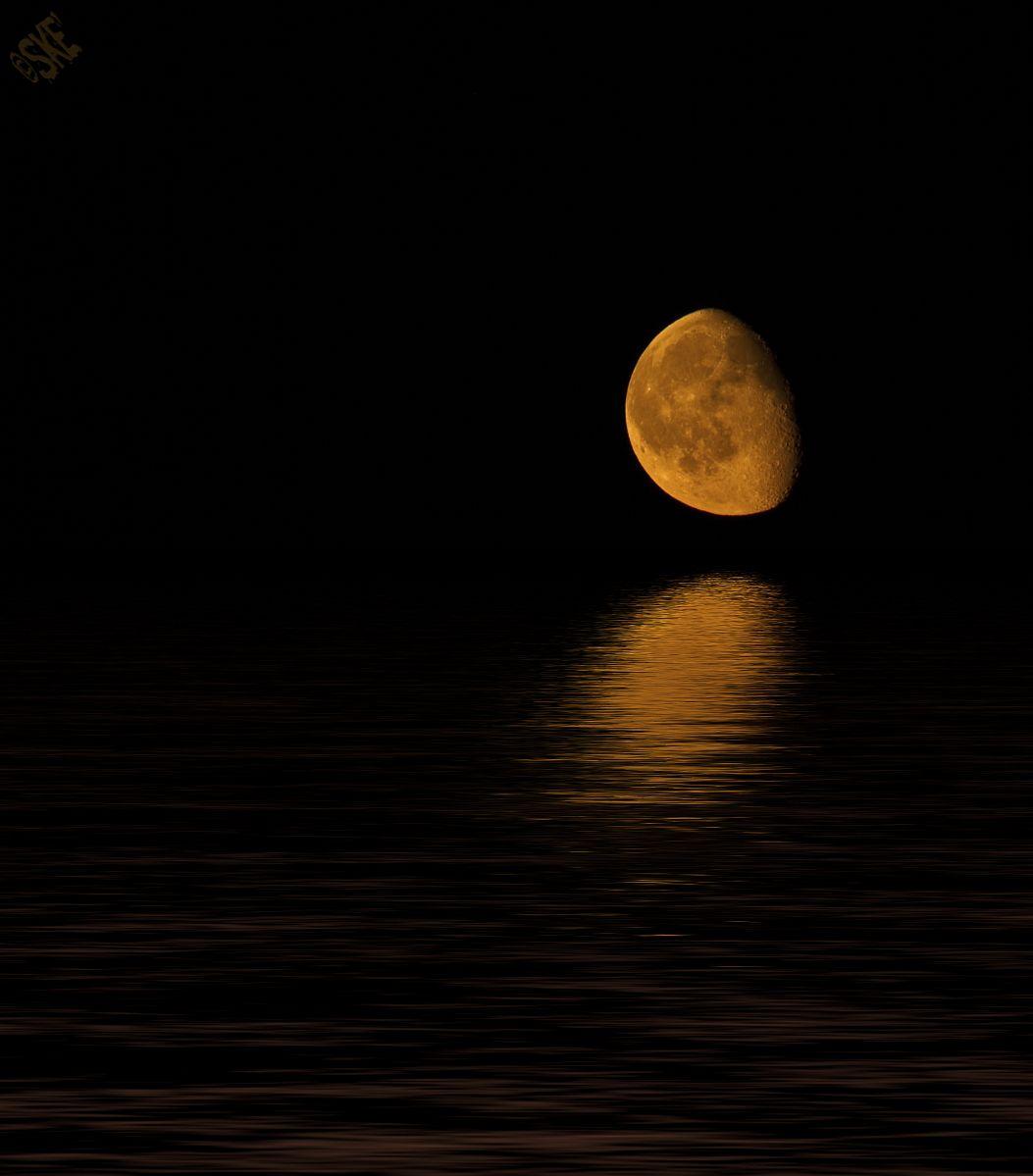 Alle Größen | il profondo pensiero della sera...... | Flickr - Fotosharing!