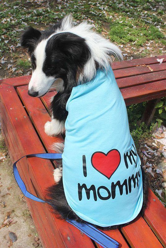 2016 Fashion Big Dog Clothes Adidog Large Dog Shirt Labrador