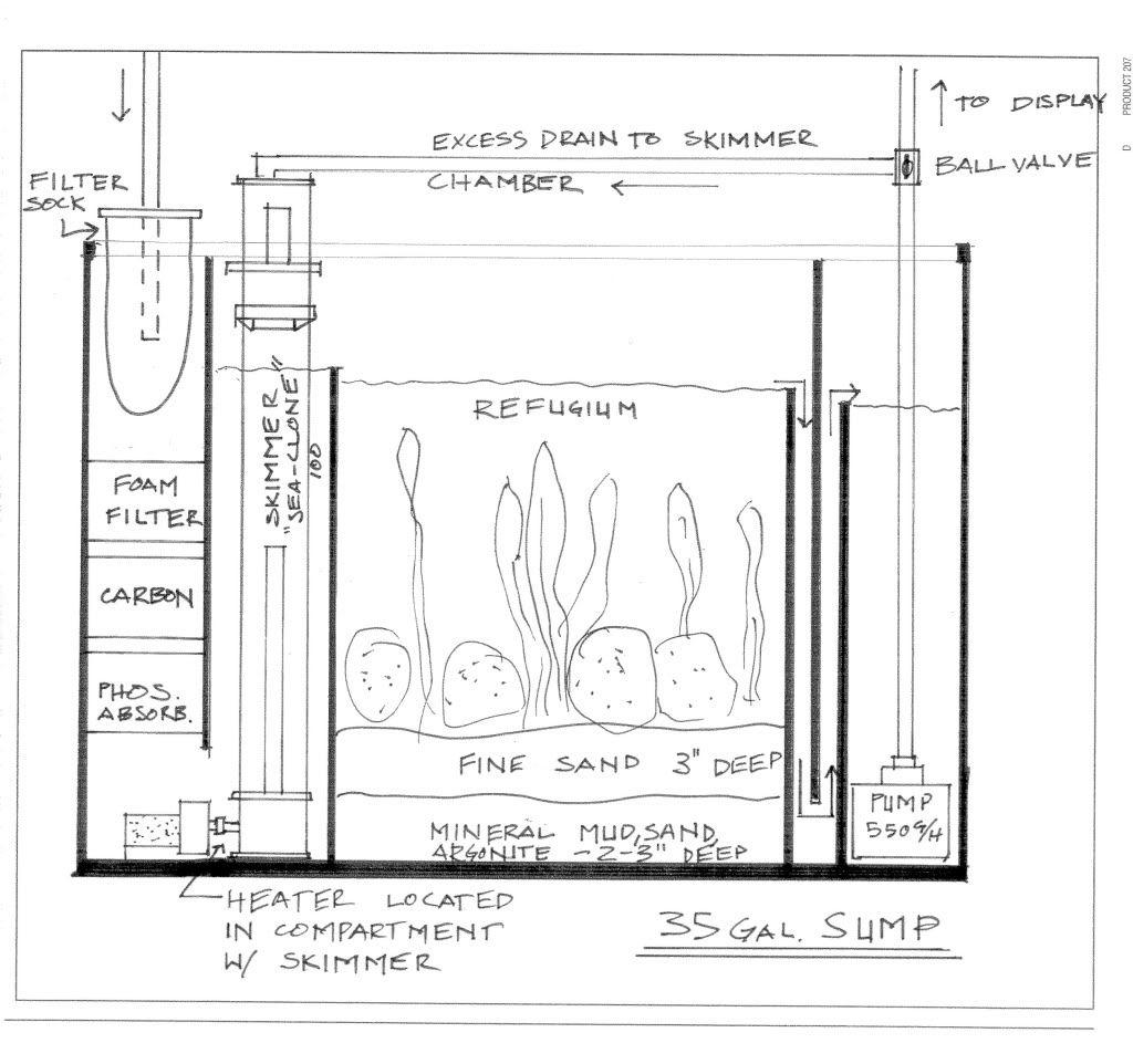 Saltwater Sump Diagram