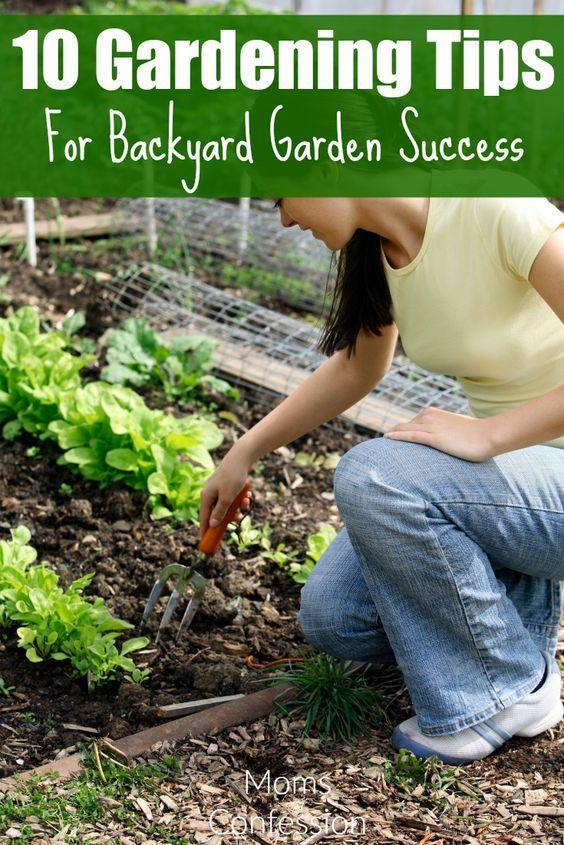 10 Garden Hacks U0026 Tips For Backyard Gardening Success