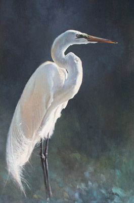 Egret oil paintings giclee available birds pinterest for White heron paint