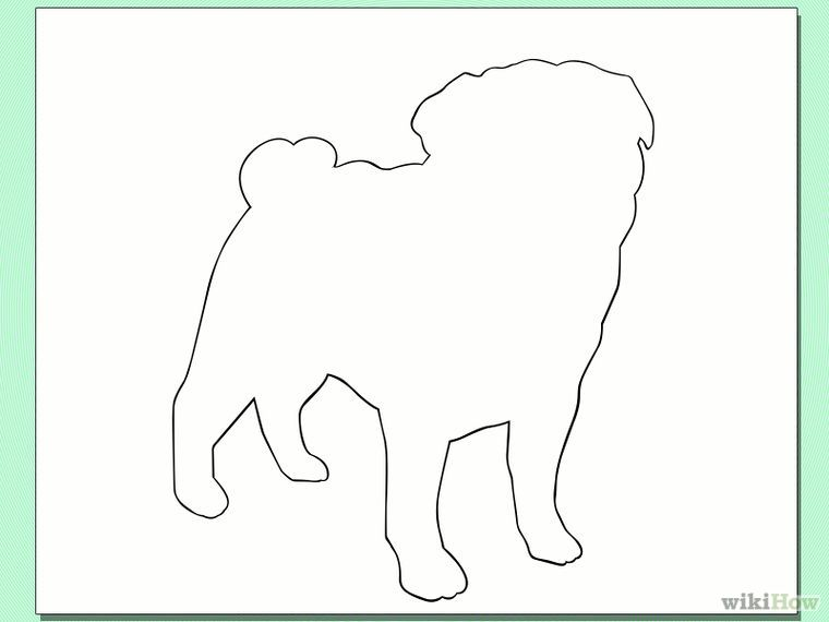 How To Draw A Pug Dog 6 Steps With Pictures Wikihow Pug Dog