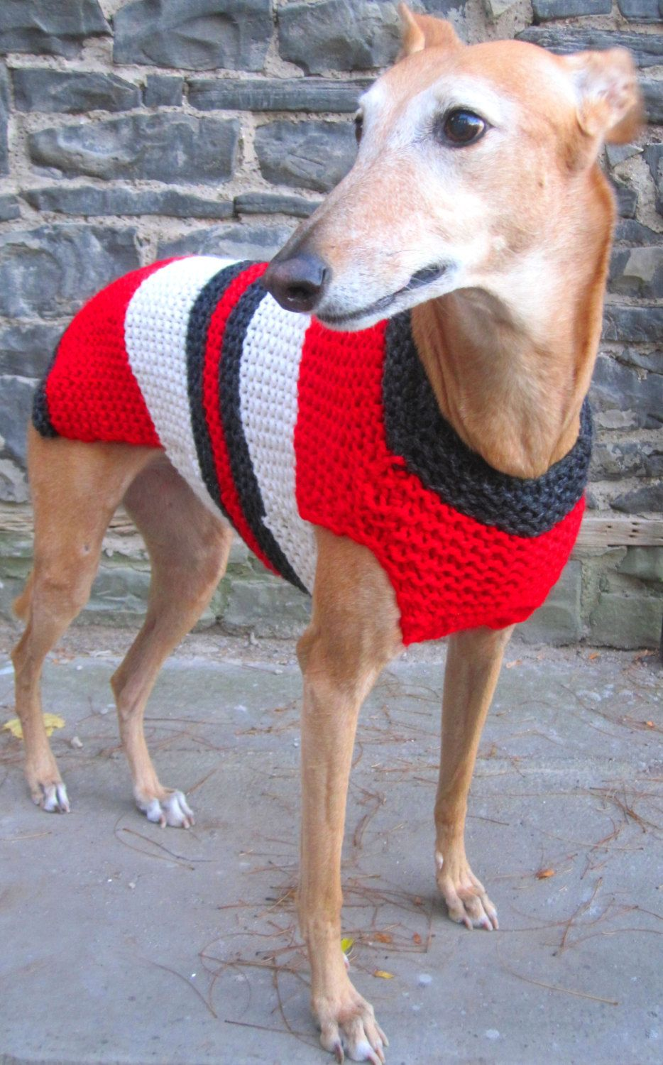 Dog sweater-hand knit dog sweater/all size dog coat/greyhound sweater/whippet sweater/pitbull coat/Shih tzu sweater/Pug coat/daschund coat - pinned by pin4etsy.com