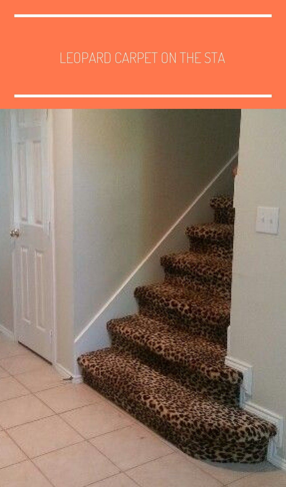 Best Leopard Carpet On The Sta In 2020 Carpet Stairs Stairs 400 x 300