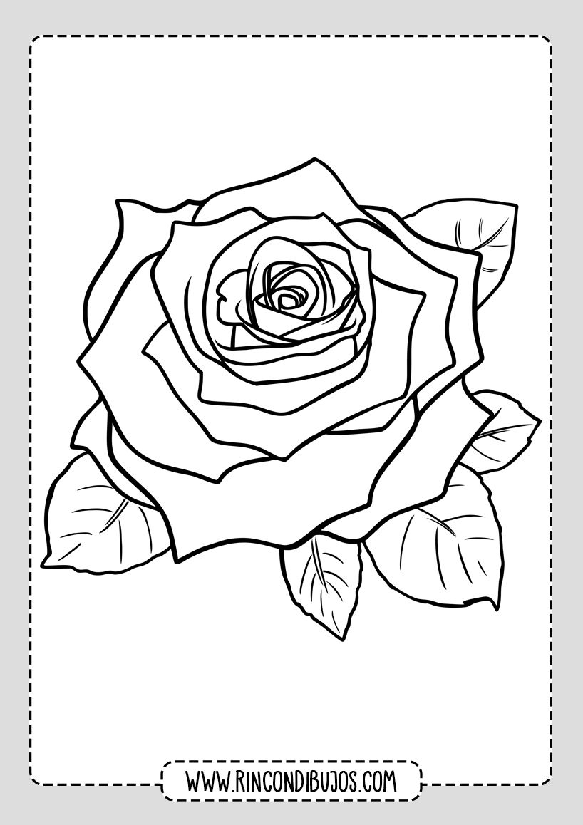 Imprimir Dibujos De Rosas Colorear Rincon Dibujos Dibujos De Rosas Dibujo De Rosa Páginas Para Colorear De Flores