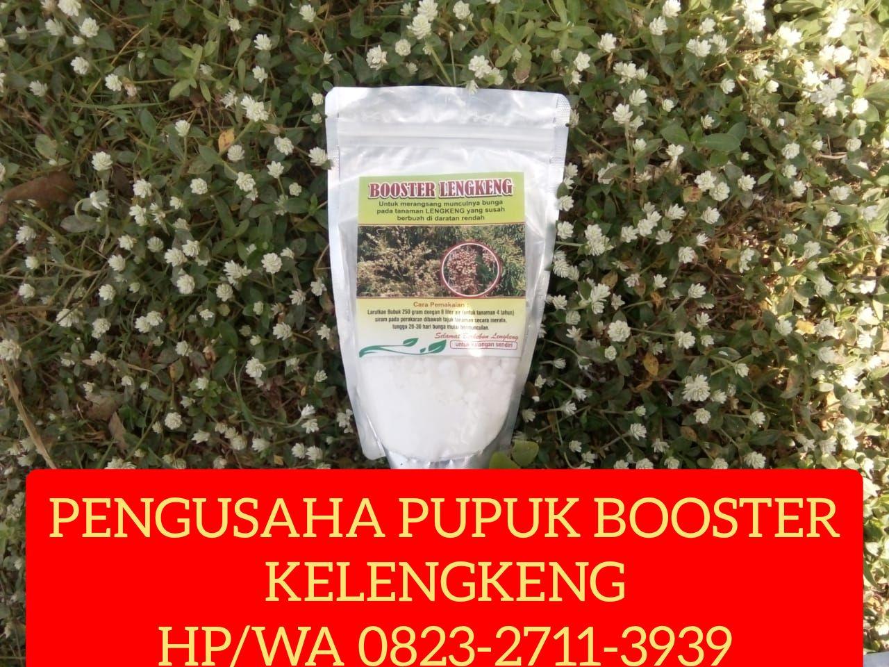 Best Price Hp Wa 0823 2711 3939 Buah Tanaman Aplikasi