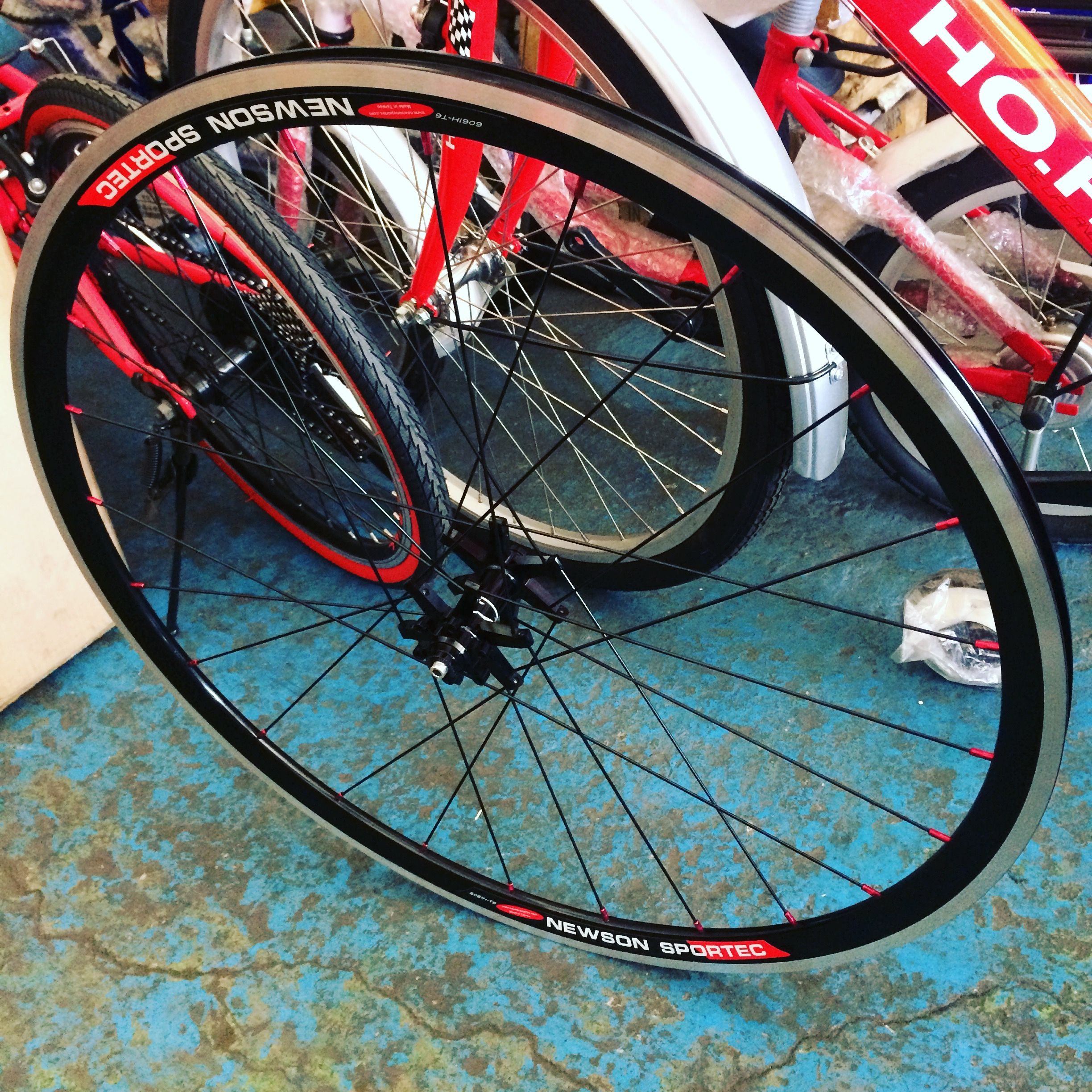 We Offer Rims And Stainless Straight Pull Spokes The Sample Front