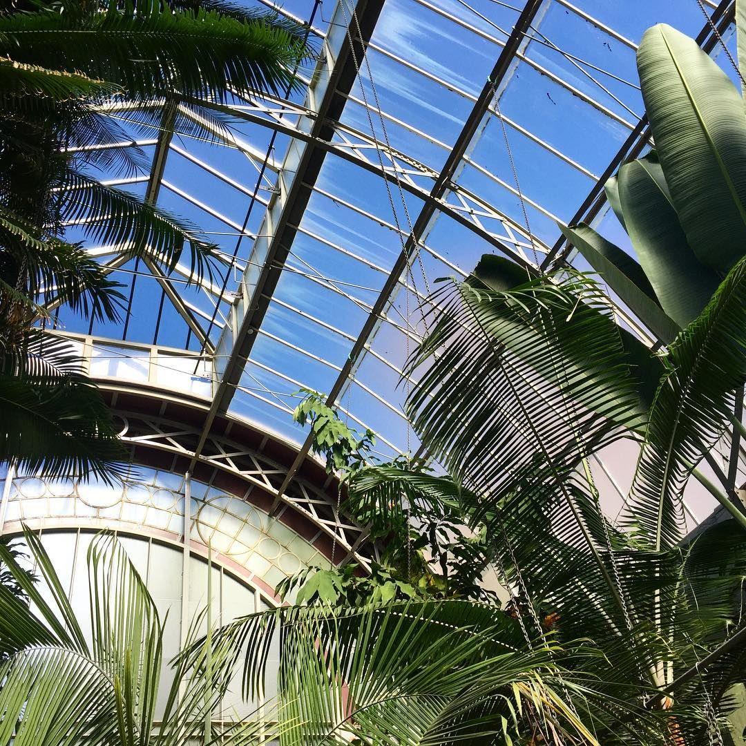 nice day for it wintergarden retail garden centre design