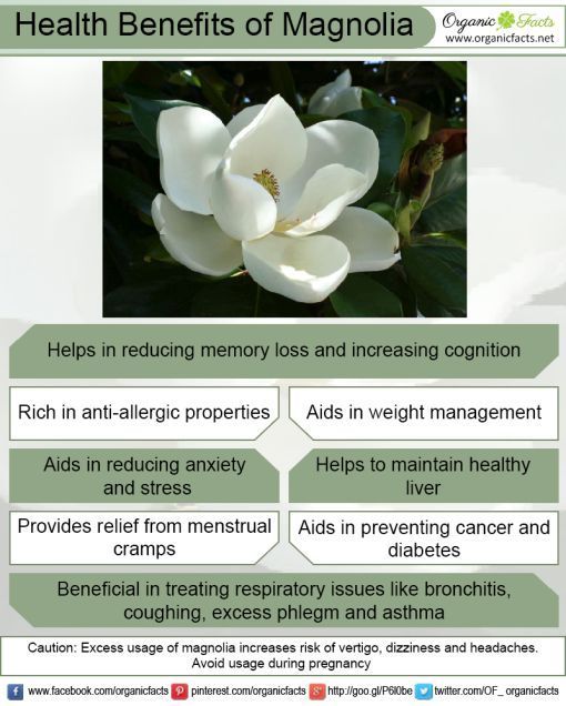 Health Benefits Of Magnolia Remedies For Menstrual Cramps Menstrual Cramps Natural Remedies